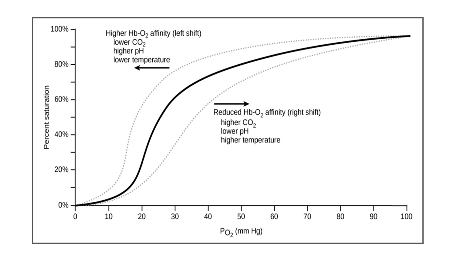 Physiology RS O2curve